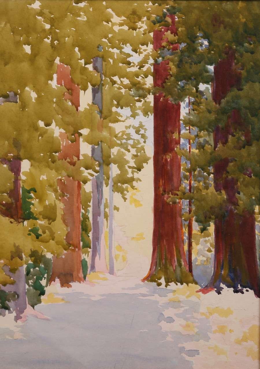 Erwin Winterhalder Watercolor Redwood Trees In Snow California Historical Design